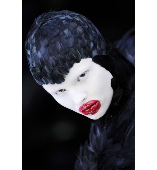 Savage Beauty van Alexander McQueen