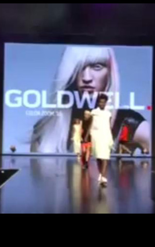 Video: Première Color Zoom'16 by Goldwell