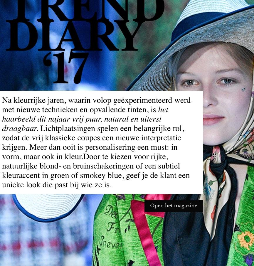 Nieuw E-zine: Trend Diary '17